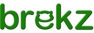 Brekz International Logo