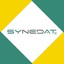 Synedat Consulting GmbH Logo