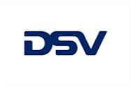 DSV Logo