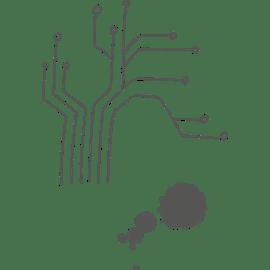 Berufsbild Duales Studium Softwaretechnik