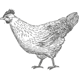 Landwirt/in Gehalt