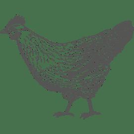 Tierwirt/in Gehalt