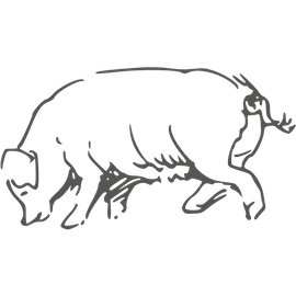 Berufsbild Lederherstellung und Gerbereitechnik, Fachkraft