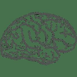 Berufsbild Duales Studium Angewandte Therapiewissenschaften
