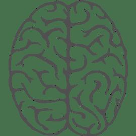 Berufsbild Duales Studium Ergotherapie