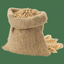 Ausbildung Verfahrenstechnologe/in Mühlen- und Getreidewirtschaft
