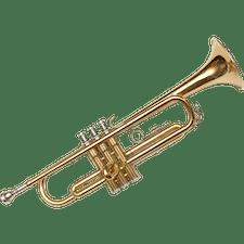 Ausbildung Ensembleleiter/in