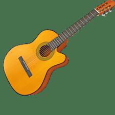 Ausbildung Zupfinstrumentmacher/in