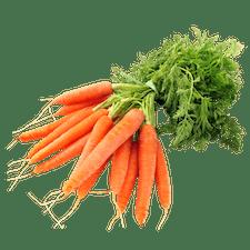 Ausbildung Duales Studium Agrarmanagement