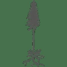 Berufsbild Duales Studium Holztechnik