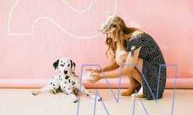 Ausbildung mit Tieren: Mach dein Hobby zum Beruf.