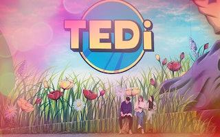 TEDi 1
